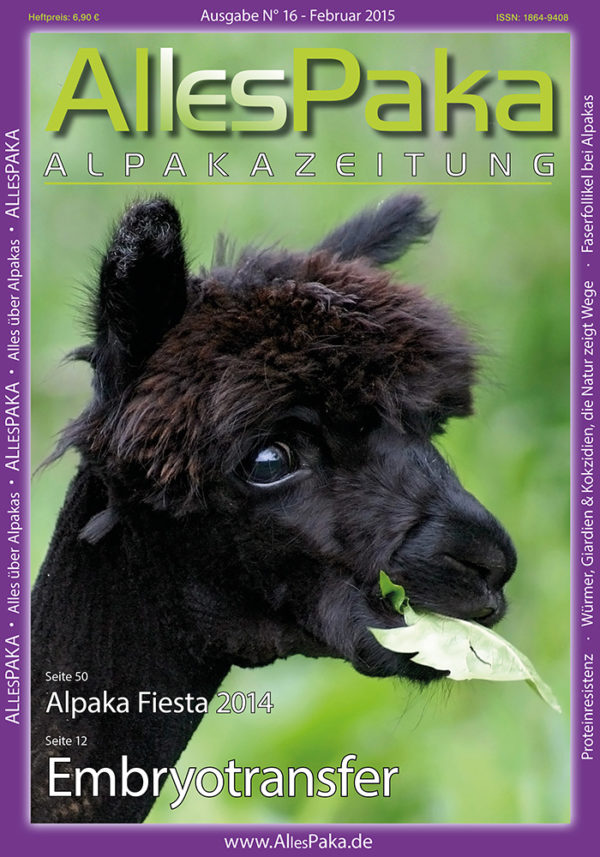 16 Allesoaka F2015